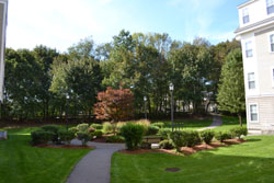 landscaped-courtyard-fa